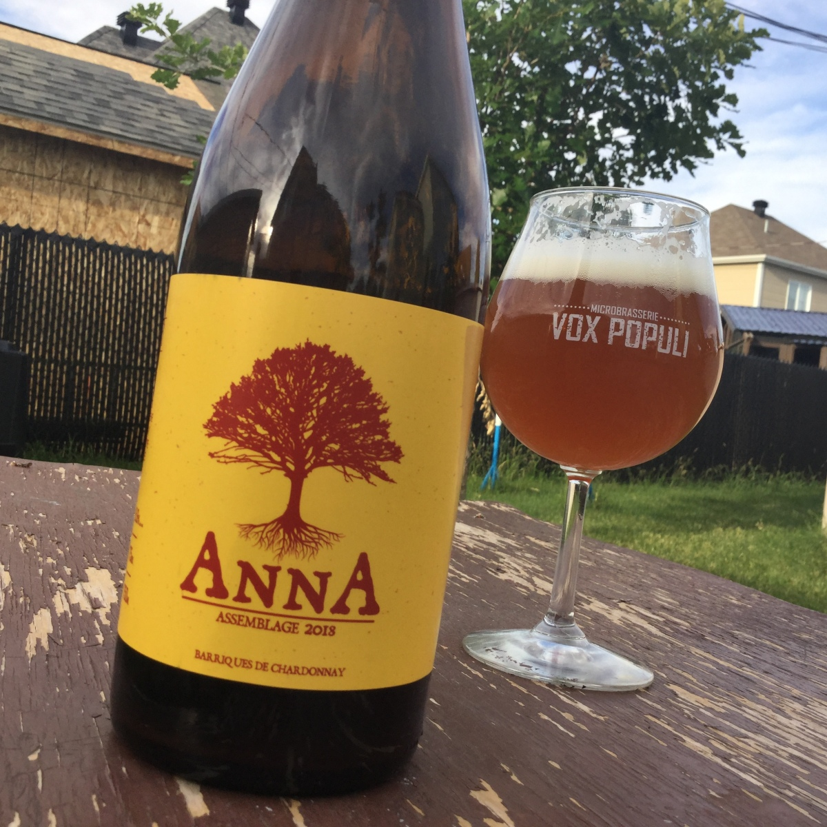 Anna - Assemblage 2018